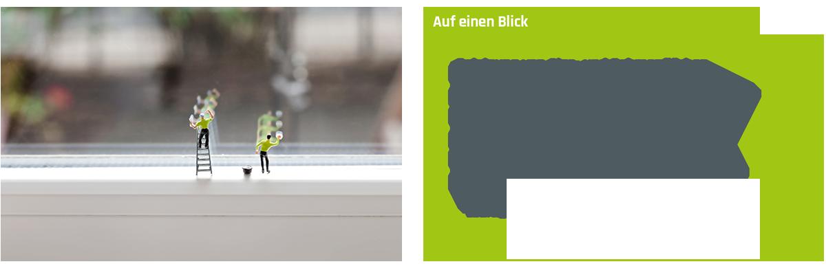 Fenster- und Rahmenreinigung auf einen Blick
